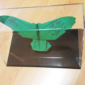 Origami Display Case