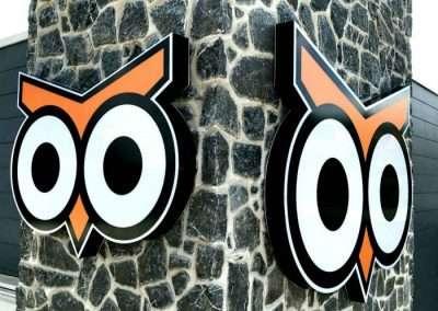 Night Owl 3 EDIT RESIZED 700 x 626