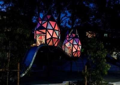 Elouera Reserve Macquarie Park Rose Buds Night 2